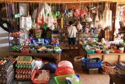 vientiane market