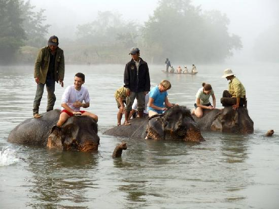 Elephant Village Sanctuary near Luang Prabang